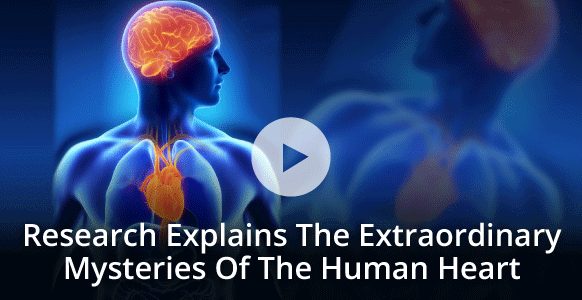 [VIDEO] HeartMath Institute Explains The Heart-Brain Connection & Other Extraordinary Facts About The Human Heart